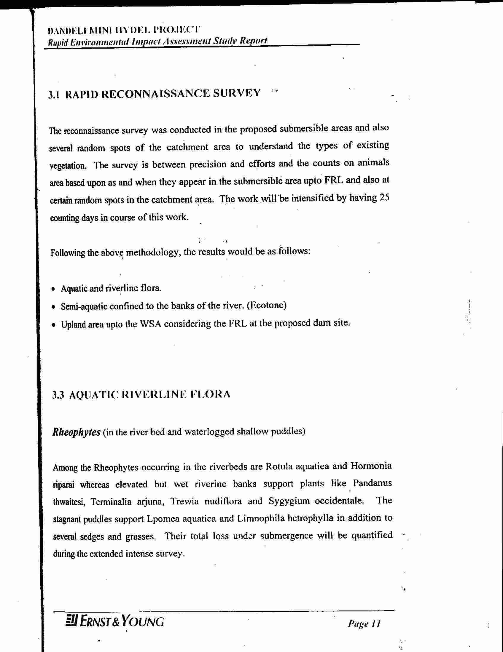 100 Curriculum Vitae Personal Statement Samples Cv Personal
